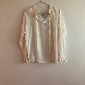 Water baker silk poet sleeve blouse
